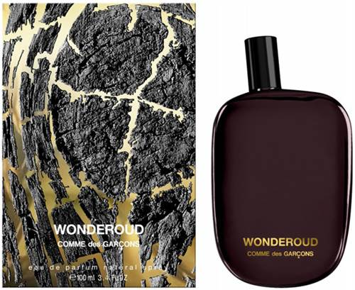 Picture of Comme des Garcons Wonderoud